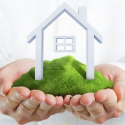 Male hands holding a green hill with small house